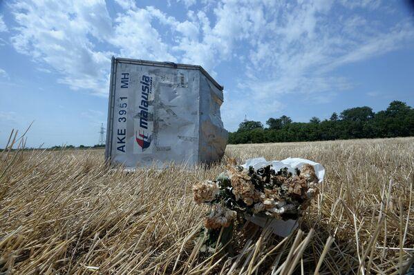 MH17: escenas del lugar de la catástrofe - Sputnik Mundo