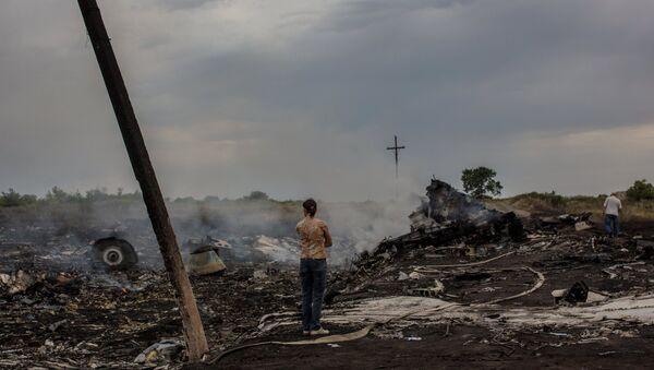 Informe sobre el MH17 es el comienzo de un largo trabajo, según autoridad rusa - Sputnik Mundo