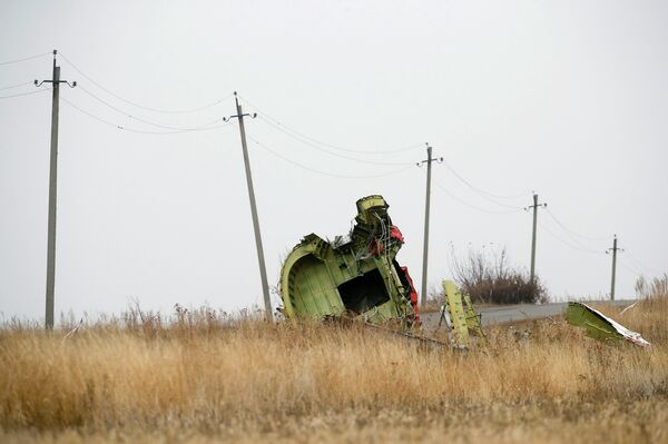 Es probable que nunca se hallen los restos mortales de todos los pasajeros del MH17 - Sputnik Mundo