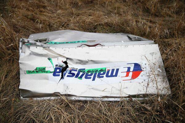 Malasia está dispuesta a participar en la investigación penal del siniestro del MH17 - Sputnik Mundo