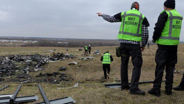 Expertos hallan nuevos fragmentos del Boeing malasio siniestrado en el este de Ucrania - Sputnik Mundo