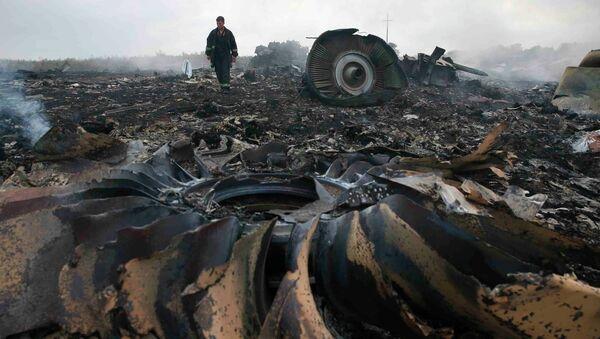 Lugar del siniestro del Boeing MH17 (archivo) - Sputnik Mundo
