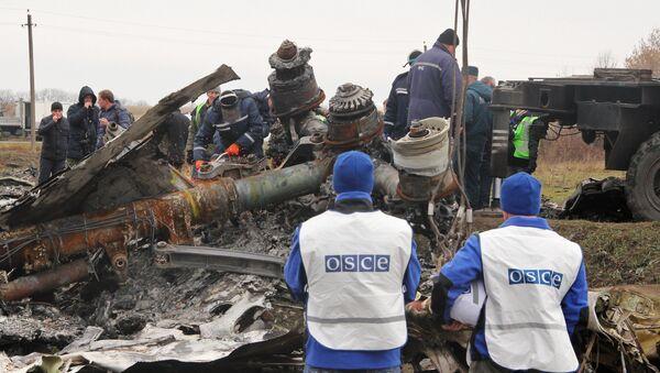 Expertos de Holanda reconocen partes del vuelo MH17 siniestrado en Ucrania - Sputnik Mundo