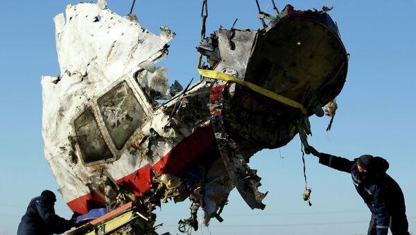 Restos del avión malasio derribado en el este de Ucrania (archivo) - Sputnik Mundo