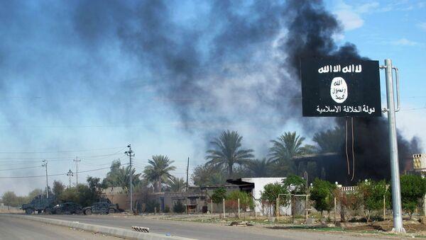 Catar y otras monarquías árabes financian varios grupos islamistas en Siria e Irak - Sputnik Mundo